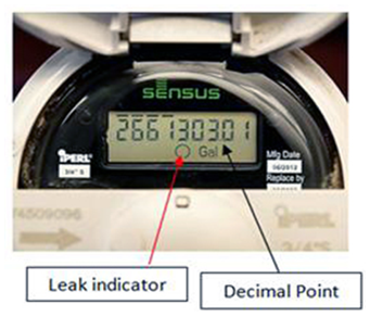 Reading a Sensus iPearl Meter