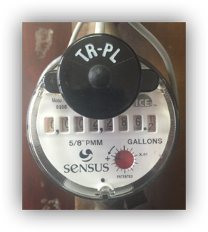 sensus analog meter